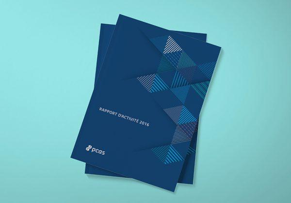 PCAS: Rapport Annuel Cover